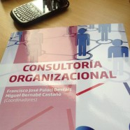 Nuevo Libro en Consultoría